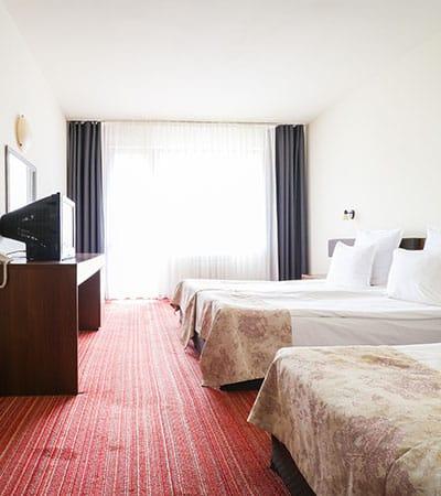 стая с 3 легла