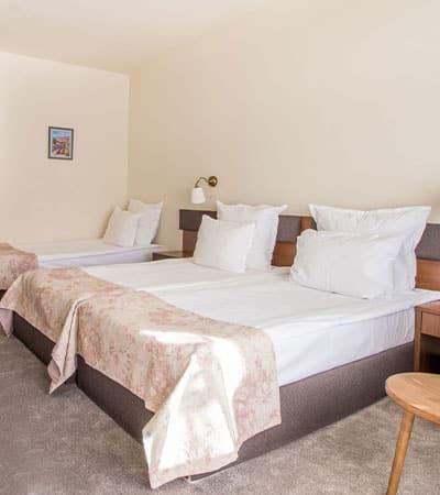 Стая с три легла